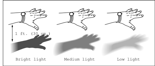 Perform this shadow test to measure light intensity.