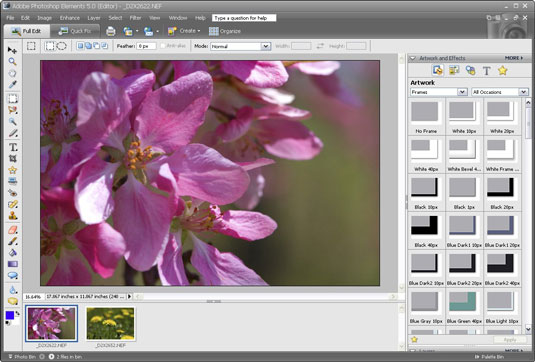 Photoshop Elements gives you many image-editing abilities.