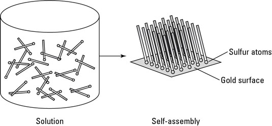 Atoms of sulfur bonding to gold atoms as an example of self-assembly.