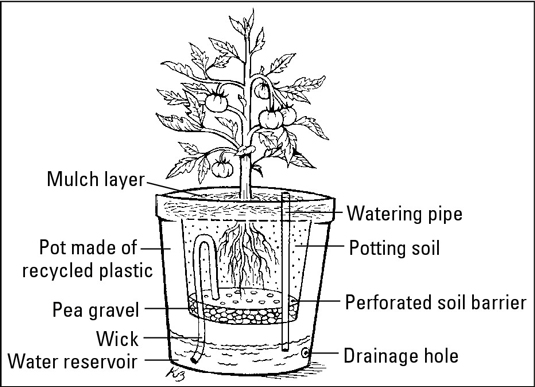 Use self-watering containers to simplify watering.