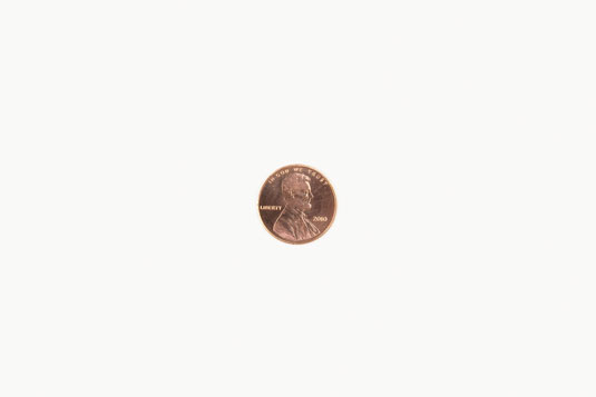 A penny at 1:4 ratio, printed in a 4x6 print