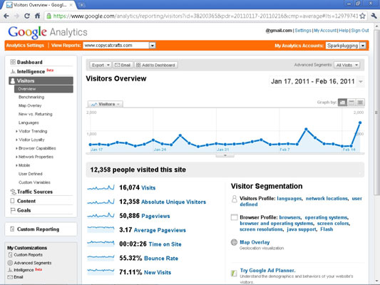 Visitors Overview in Google Analytics.