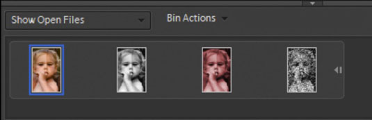 Click one of the thumbnails in the Project Bin to open the respective photo in the image window.