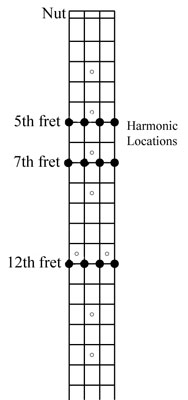The main harmonics on a bass guitar.
