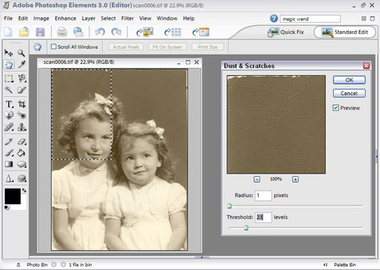 Remove imperfections in your image by using the Dust & Scratches dialog box.