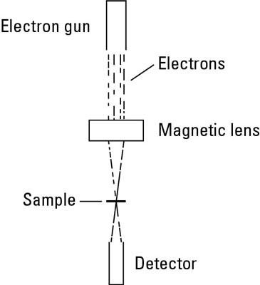 Diagram of a transmission electron microscope.