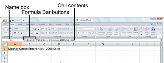 What you type appears in the current cell and on the Formula bar.