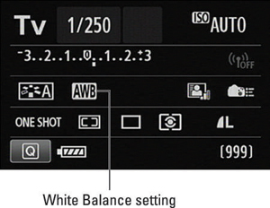 This symbol represents the Automatic White Balance setting.