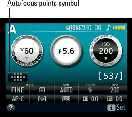 This symbol gives you more information about which autofocus points are active in the current AF-ar
