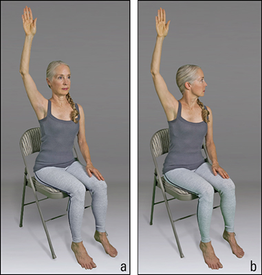 <b>Figure </b><b>2</b><b>:</b> Seated alternate arm raise sequence.