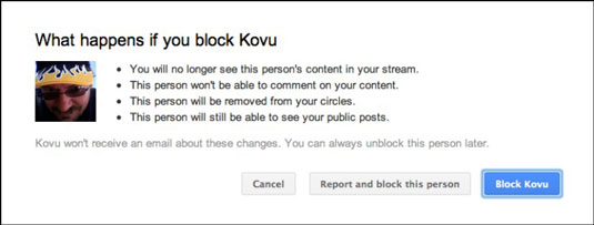 Options for blocking a user in Google+.