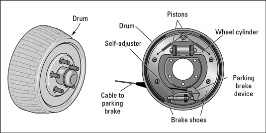The inner workings of a drum brake.
