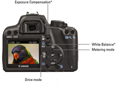 Some crucial controls on a Canon EOS Rebel XS/1000D.