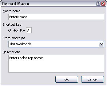 Use the Record Macro dialog box to begin creating a macro.