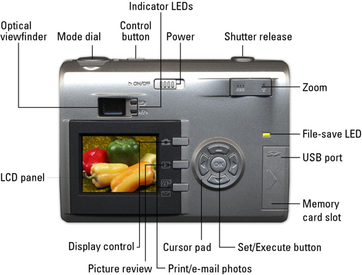 Back view of a digital camera.