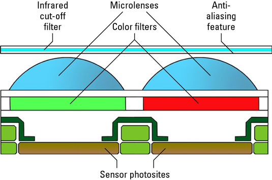 Any digital camera image sensor is made up of these components.