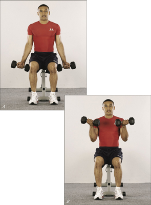 If you find yourself leaning back, you're probably using dumbbells that are too heavy.