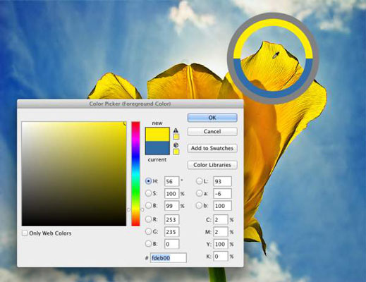 Use the Color Picker to define colors with precision. The Eyedropper's Sampling Ring is visib