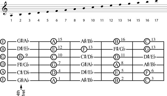 The notes of the fourth through eighth frets.