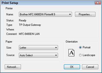 Use the Print Setup dialog box to set options for your printer.