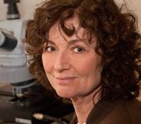 Dr. Titia de Lange