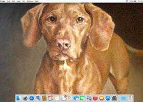 How to Put a Picture on the OS X Yosemite Desktop