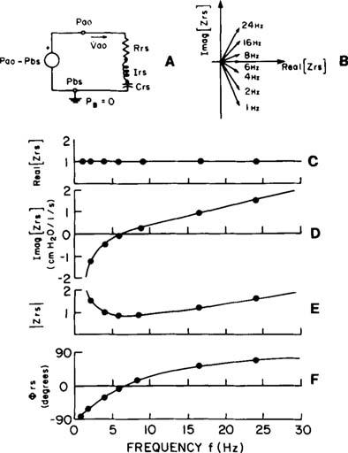 physioex 7 respiratory system mechanics Solved by ramonistry exercise 7: respiratory system mechanics: [physioex chapter 7 exercise 1] physioex 9 months ago by ramonistry (25.