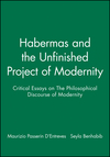 Habermas and the Unfinished Project of Modernity: Critical Essays on The Philosophical Discourse of Modernity (0745615708) cover image