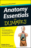 Anatomy Essentials For Dummies (1118184211) cover image