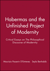 Habermas and the Unfinished Project of Modernity: Critical Essays on The Philosophical Discourse of Modernity (0745614523) cover image