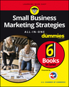 Small Business Marketing Strategies All-In-One For Dummies (1119236932) cover image