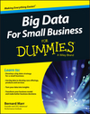 Big Data For Small Business For Dummies (1119027039) cover image