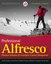 Professional Alfresco: Practical Solutions for Enterprise Content Management (0470571047) cover image