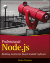 Professional Node.js: Building Javascript Based Scalable Software (1118227549) cover image