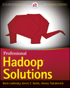 Professional Hadoop Solutions (111861254X) cover image