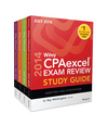 Wiley CPAexcel Exam Review 2014 Study Guide July Set (1118917855) cover image