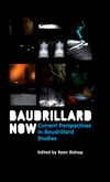 Baudrillard Now: Current Perspectives in Baudrillard Studies (0745647073) cover image