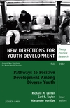 Pathways to Positive Development Among Diverse Youth: New Directions for Youth Development, Number 95 (0787963380) cover image