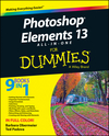 Photoshop Elements 13 All-in-One For Dummies (1118998596) cover image