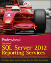 Professional Microsoft SQL Server 2012 Reporting Services (1118223799) cover image
