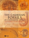 The Cambrian Fossils of Chengjiang, China: The Flowering of Early Animal Life (140516719X) cover image