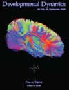 Developmental Dynamics (DVD3) cover image