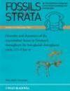 Fossils & Strata