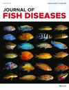Journal of Fish Diseases (JFD) cover image