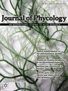 Journal of Phycology (JPY) cover image