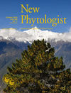 New Phytologist (NPH2) cover image
