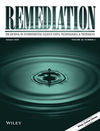 Remediation Journal (REM) cover image