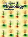 The Journal of Physiology (TJP) cover image
