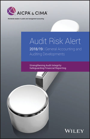 Audit Risk Alert: General Accounting and Auditing Developments 2018/19