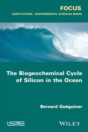 The Biogeochemical Cycle of Silicon in the Ocean (1119136903) cover image
